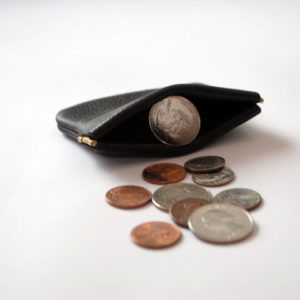 USA Pinch Coin Purse